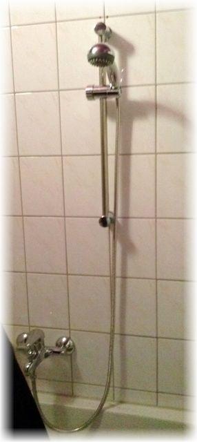 produkttest finebuy duschstange mit handbrause duschpaneel aus edelstahl dusch brause 60 cm. Black Bedroom Furniture Sets. Home Design Ideas